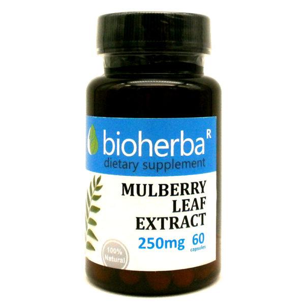 Черница лист екстракт 250 мг. 60 капсули | Bioherba
