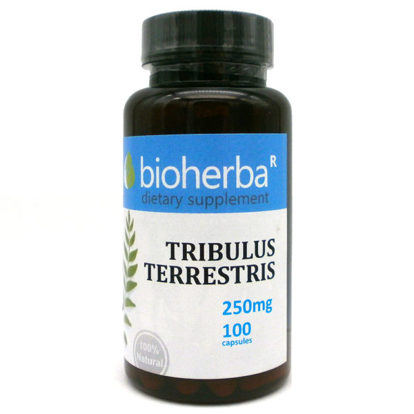 ТРИБУЛУС ТЕРЕСТРИС БИОХЕРБА КАПСУЛИ 250МГ. (BIOHERBA TRIBULUS TERRESTRIS)   Цена Информация
